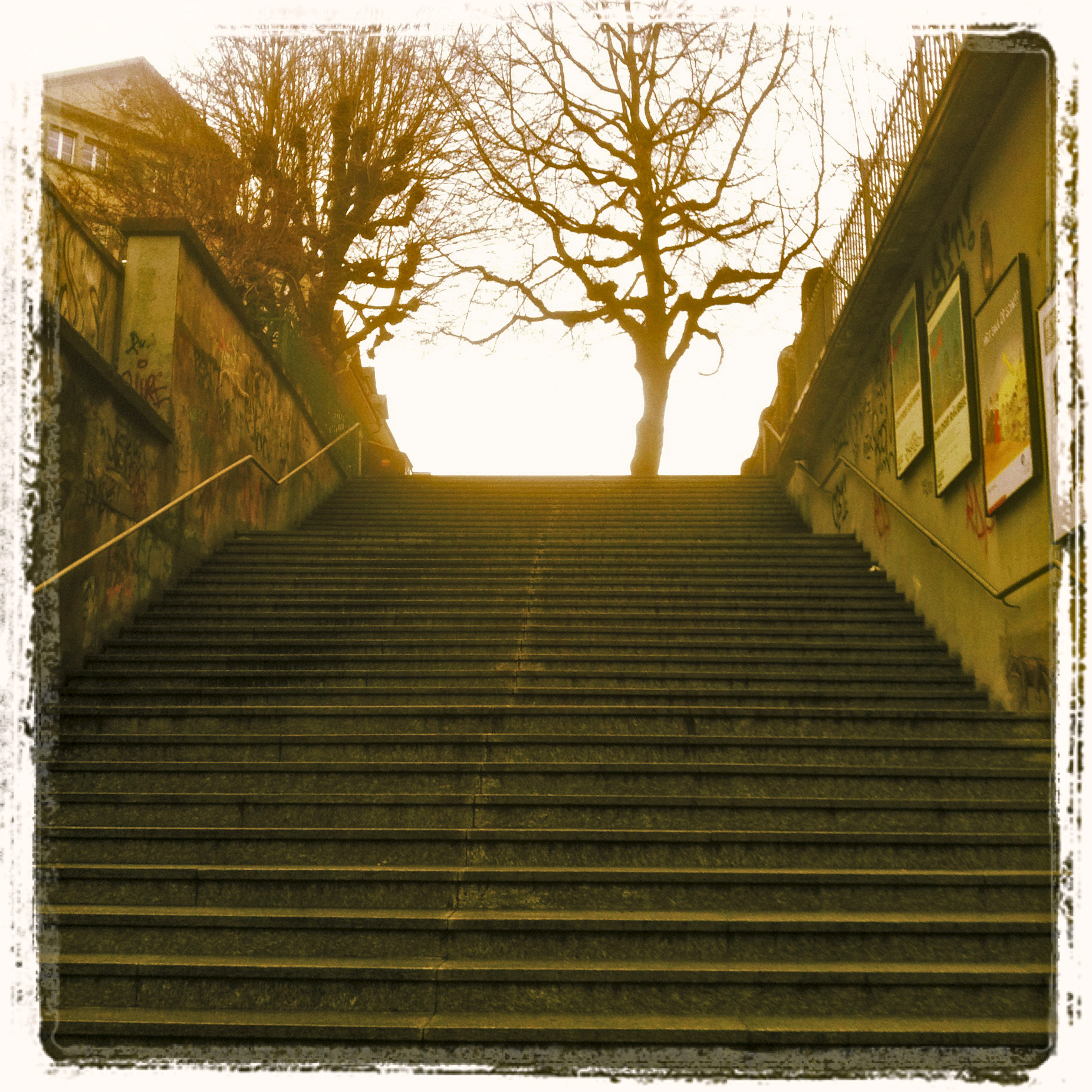 New steps. 22.12.12 ©lowereast.dk