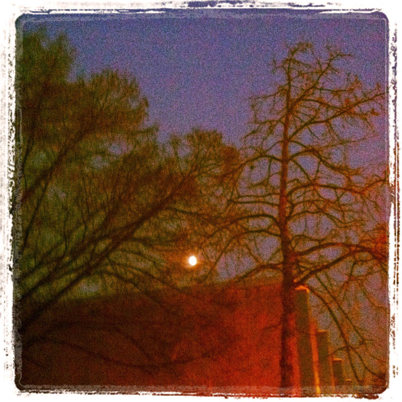 Early Moon 25.01.13 ©lowereast.dk