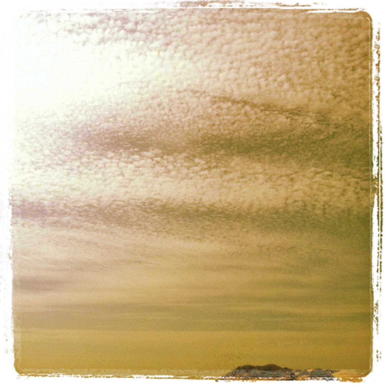 Chasing seagulls 30.07.13 ©lowereast