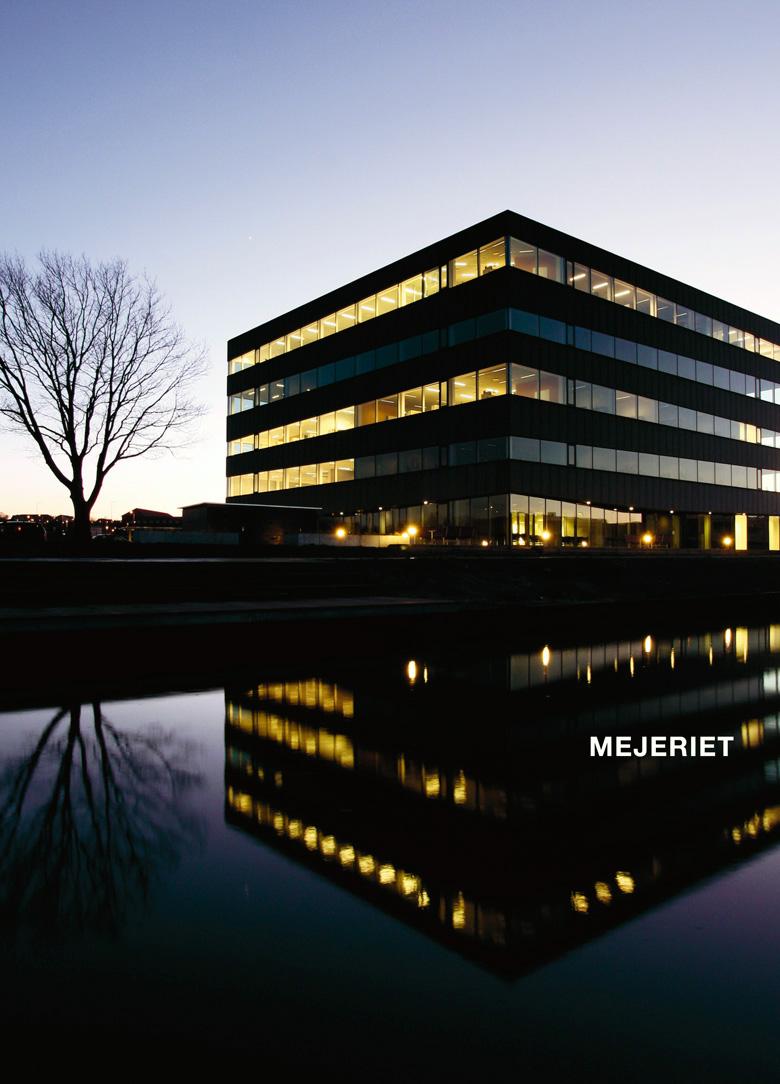 MEJERI-HANDOUT-frontpage-web